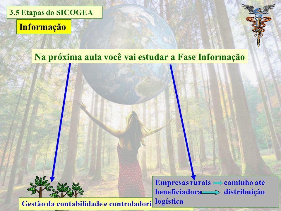 Análise do balanço ambiental e patrimonial Gestão da contabilidade e controladoria ambiental Análise sustentabilidade deficitária com indicadores cont
