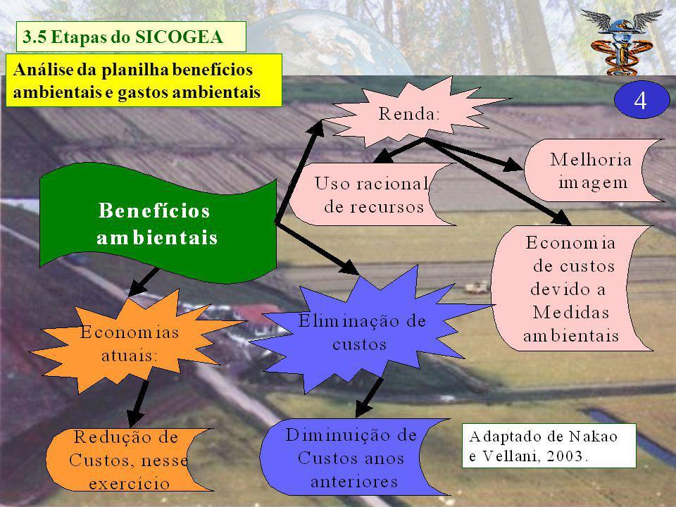 Gestão da contabilidade e controladoria ambiental Decisão 3.5 Etapas do SICOGEA