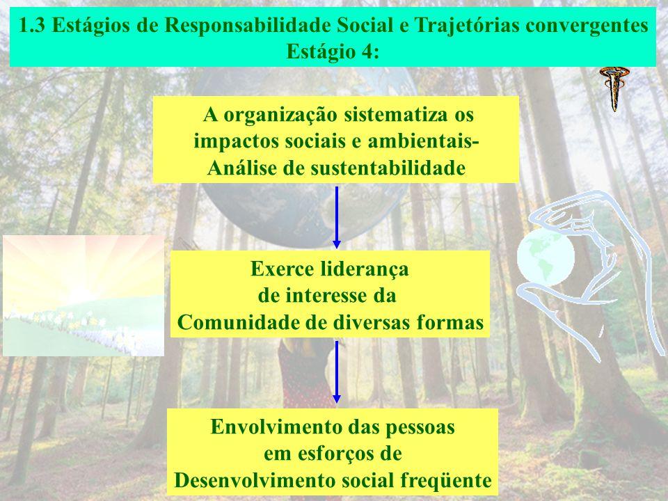 1.3 Estágios de Responsabilidade Social e Trajetórias convergentes Estágio 3: A organização está iniciando a sistematização de um processo de avaliaçã