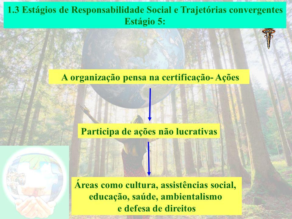 1.3 Estágios de Responsabilidade Social e Trajetórias convergentes Estágio 4: A organização sistematiza os impactos sociais e ambientais- Análise de s