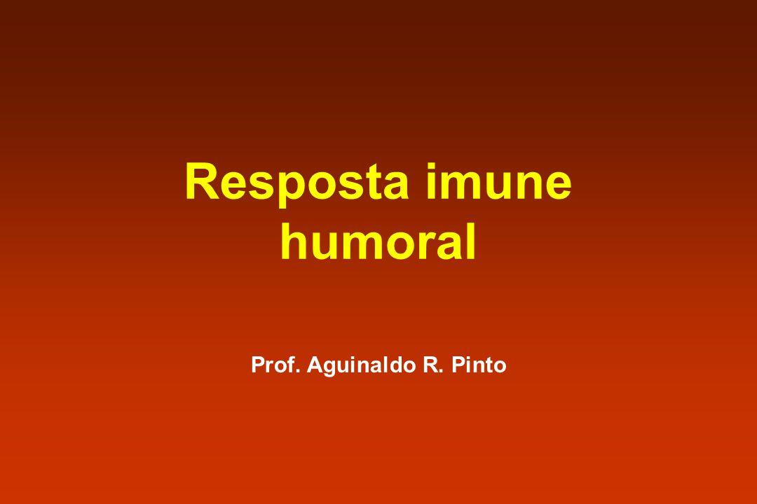 Resposta imune humoral Prof. Aguinaldo R. Pinto