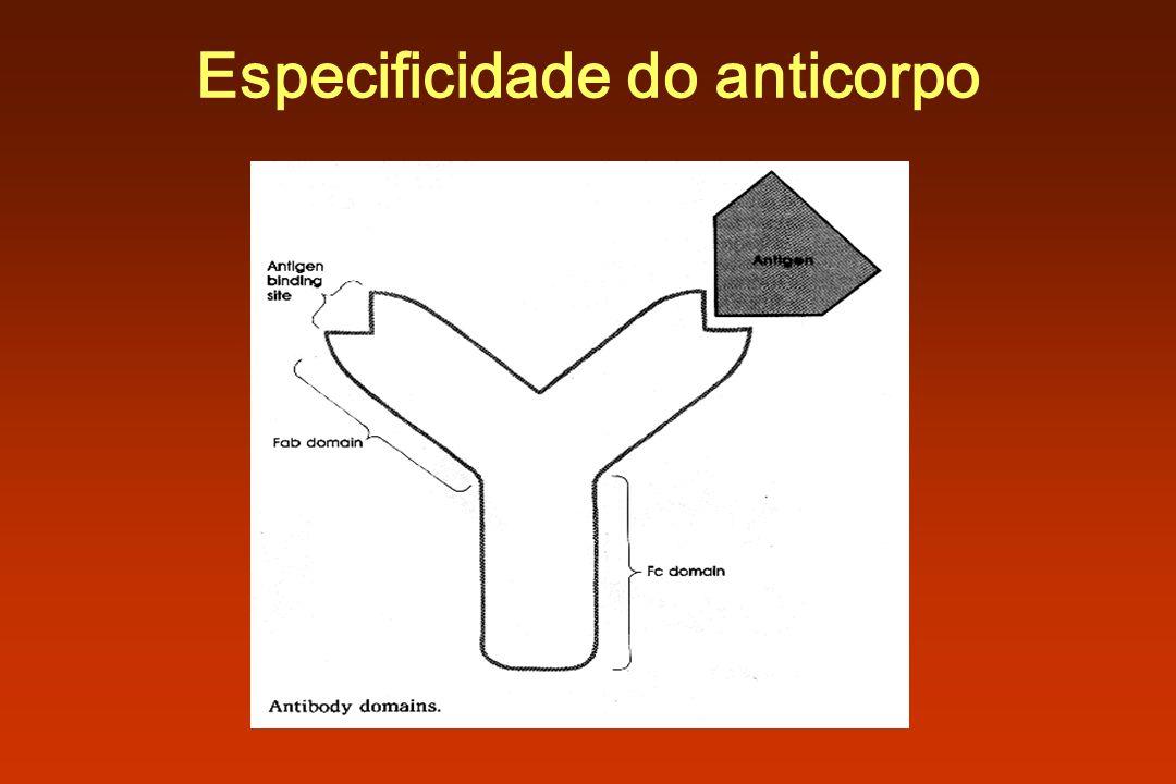 Especificidade do anticorpo