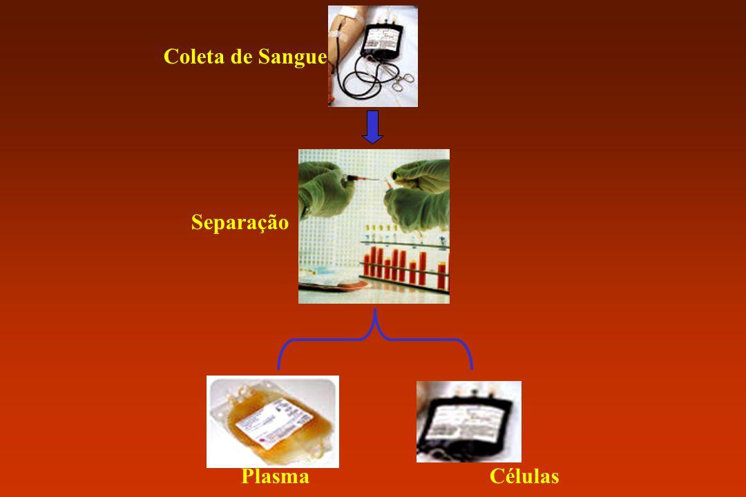 Coleta de Sangue Separação PlasmaCélulas