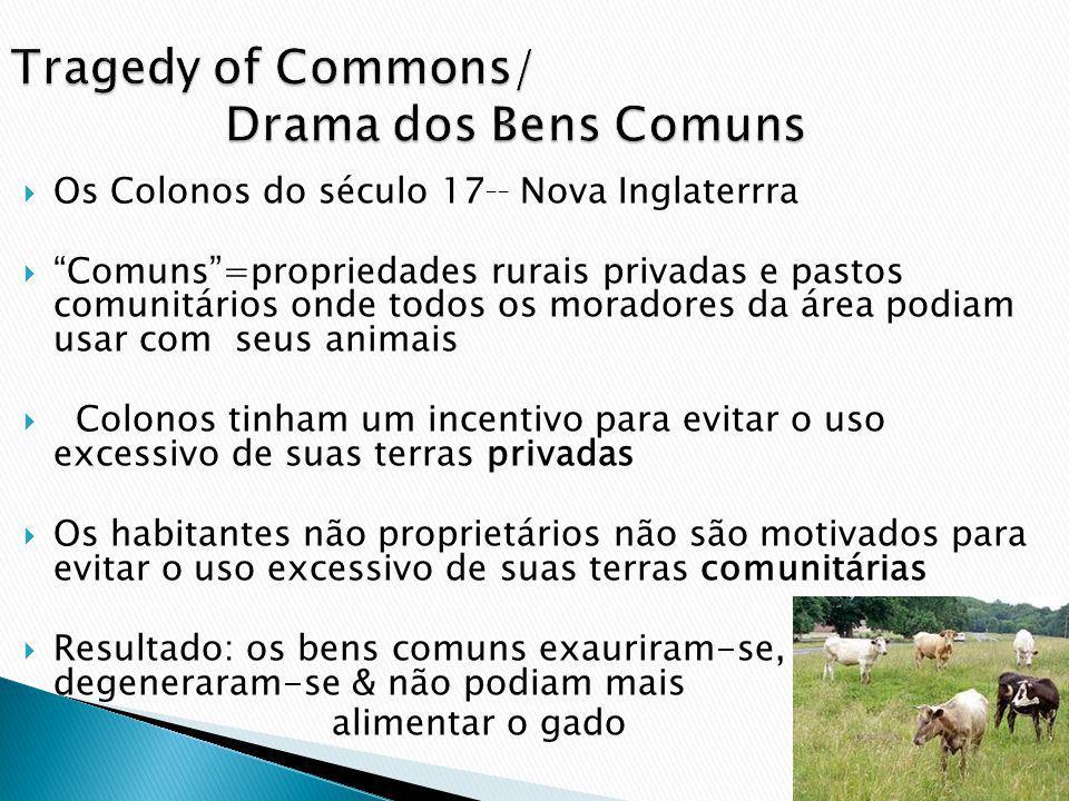 Os Colonos do século 17 __ Nova Inglaterrra Comuns=propriedades rurais privadas e pastos comunitários onde todos os moradores da área podiam usar com