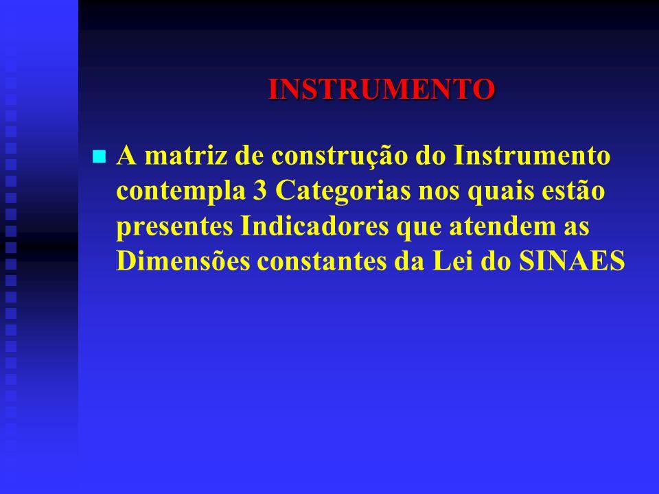 INSTRUMENTO A matriz de construção do Instrumento contempla 3 Categorias nos quais estão presentes Indicadores que atendem as Dimensões constantes da