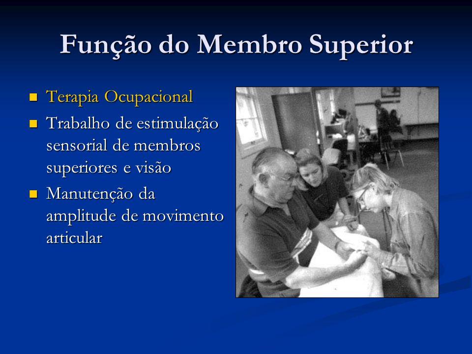 Função do Membro Superior Terapia Ocupacional Terapia Ocupacional Trabalho de estimulação sensorial de membros superiores e visão Trabalho de estimula