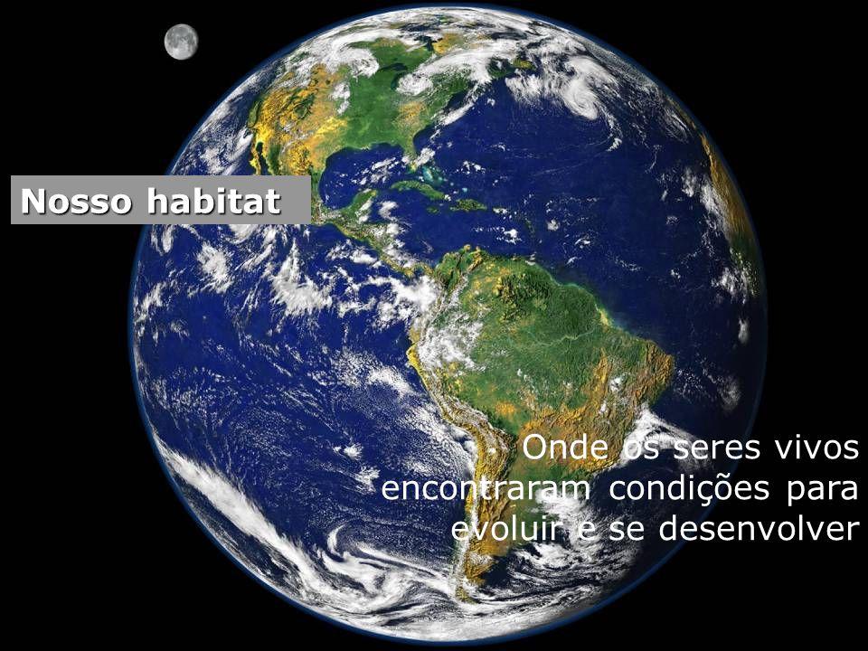 No espaço......muito frio no Polo Norte...... debaixo dágua......e local quente e úmido!!...