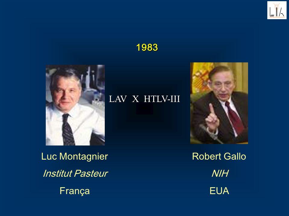 1983 Luc Montagnier Institut Pasteur França Robert Gallo NIH EUA LAV X HTLV-III