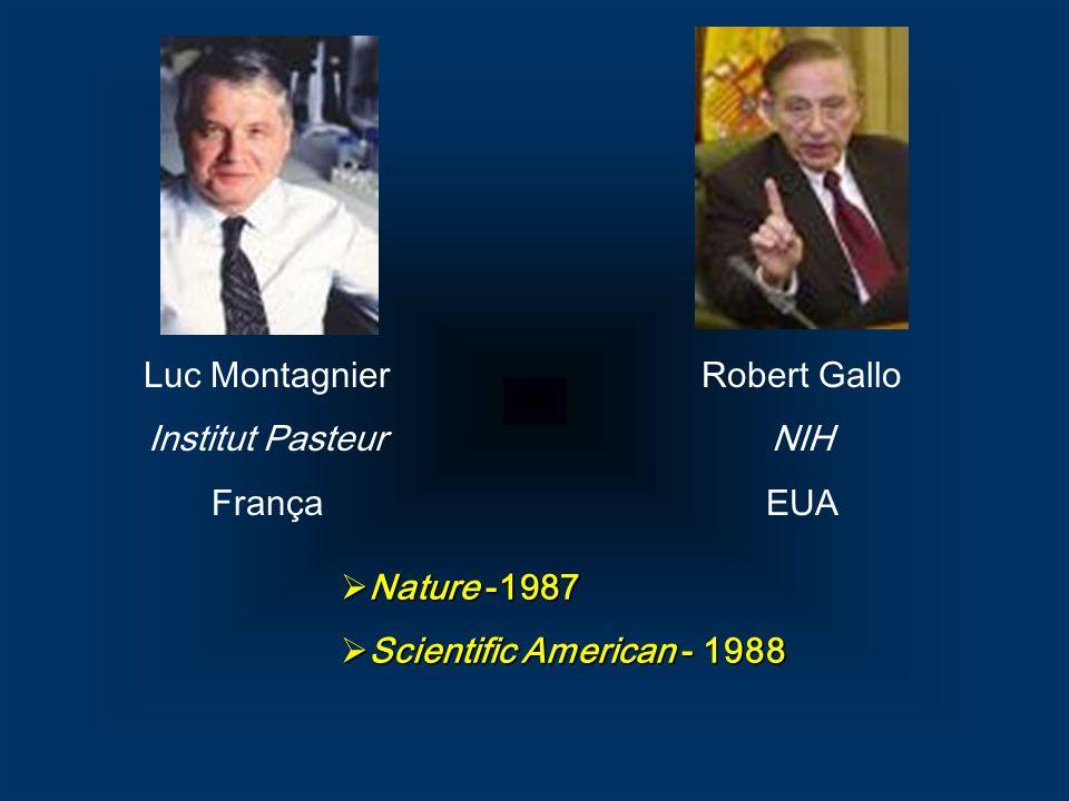 Luc Montagnier Institut Pasteur França Robert Gallo NIH EUA Nature -1987 Nature -1987 Scientific American - 1988 Scientific American - 1988
