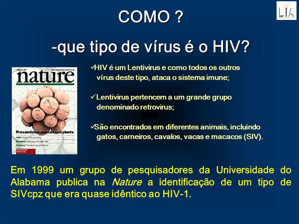 COMO ? -que tipo de vírus é o HIV? Em 1999 um grupo de pesquisadores da Universidade do Alabama publica na Nature a identificação de um tipo de SIVcpz