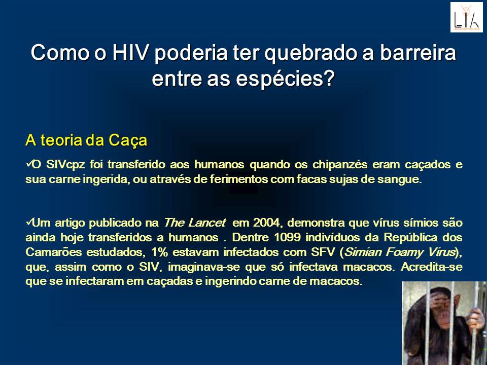 Como o HIV poderia ter quebrado a barreira entre as espécies? A teoria da Caça A teoria da Caça O SIVcpz foi transferido aos humanos quando os chipanz