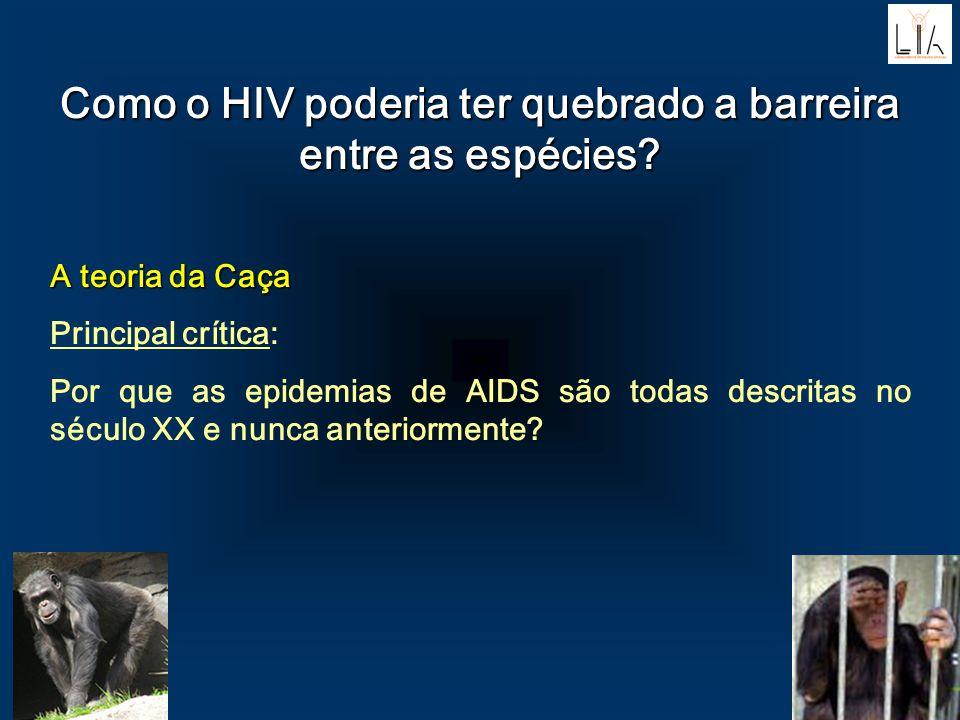 Como o HIV poderia ter quebrado a barreira entre as espécies? A teoria da Caça A teoria da Caça Principal crítica: Por que as epidemias de AIDS são to