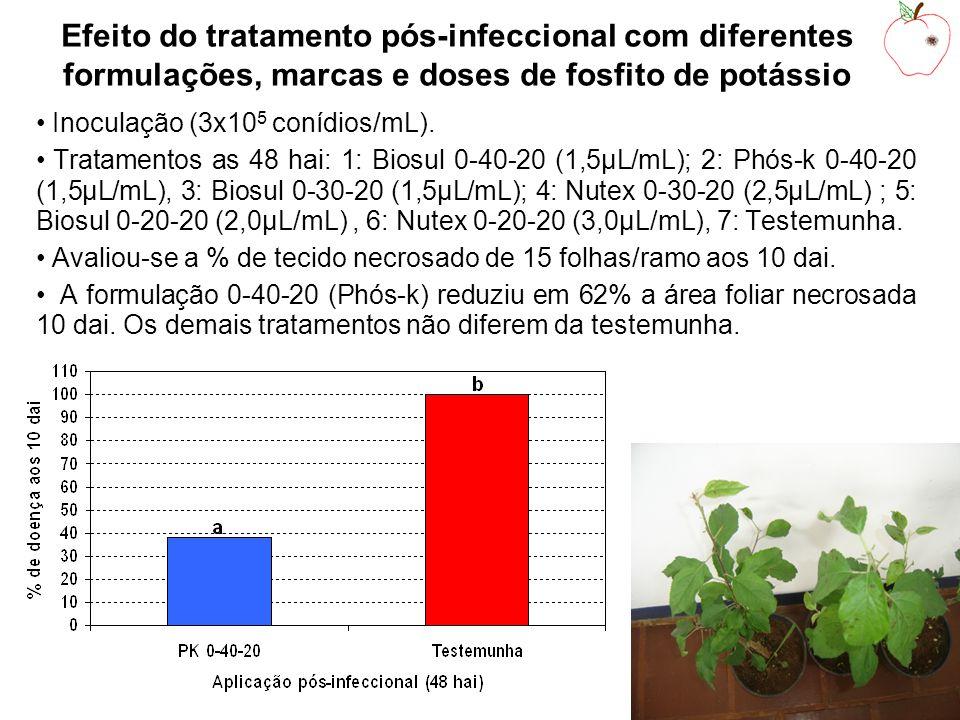 Efeito do tratamento pós-infeccional com diferentes formulações, marcas e doses de fosfito de potássio Inoculação (3x10 5 conídios/mL).