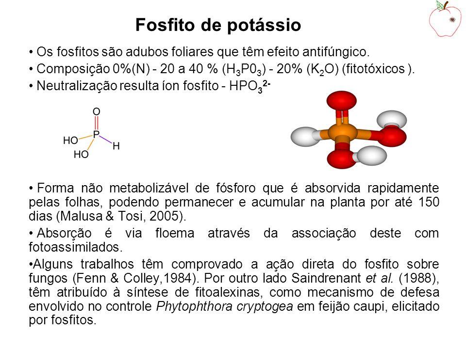 Conclusões Fosfitos de potássio têm ação fungistática sobre C.