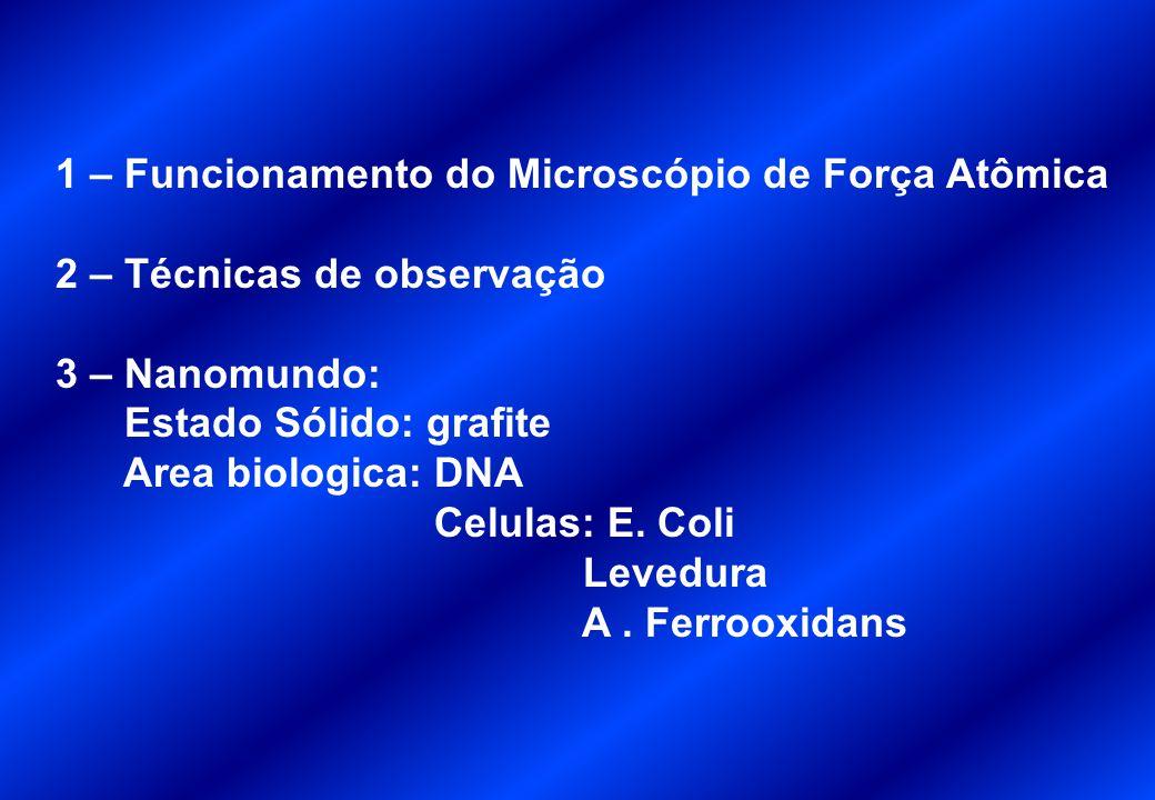 Rhodamine 6G dye molecules Confocal 10 x 10 micronsConfocal 1 x 1 micronsSNOM 1 x 1 microns