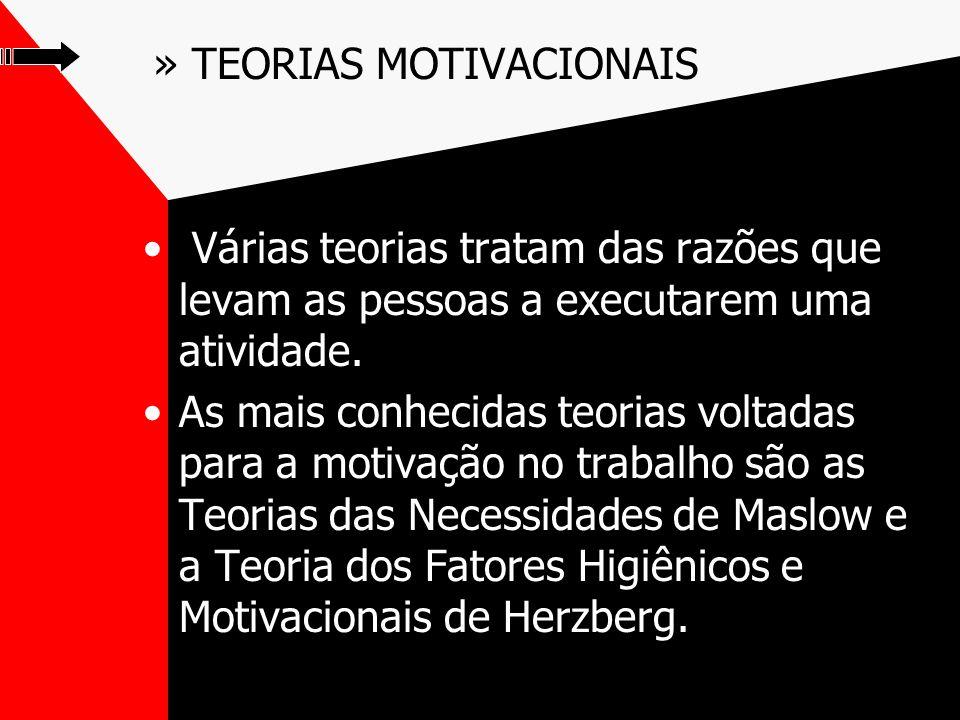 » TEORIAS MOTIVACIONAIS Várias teorias tratam das razões que levam as pessoas a executarem uma atividade.