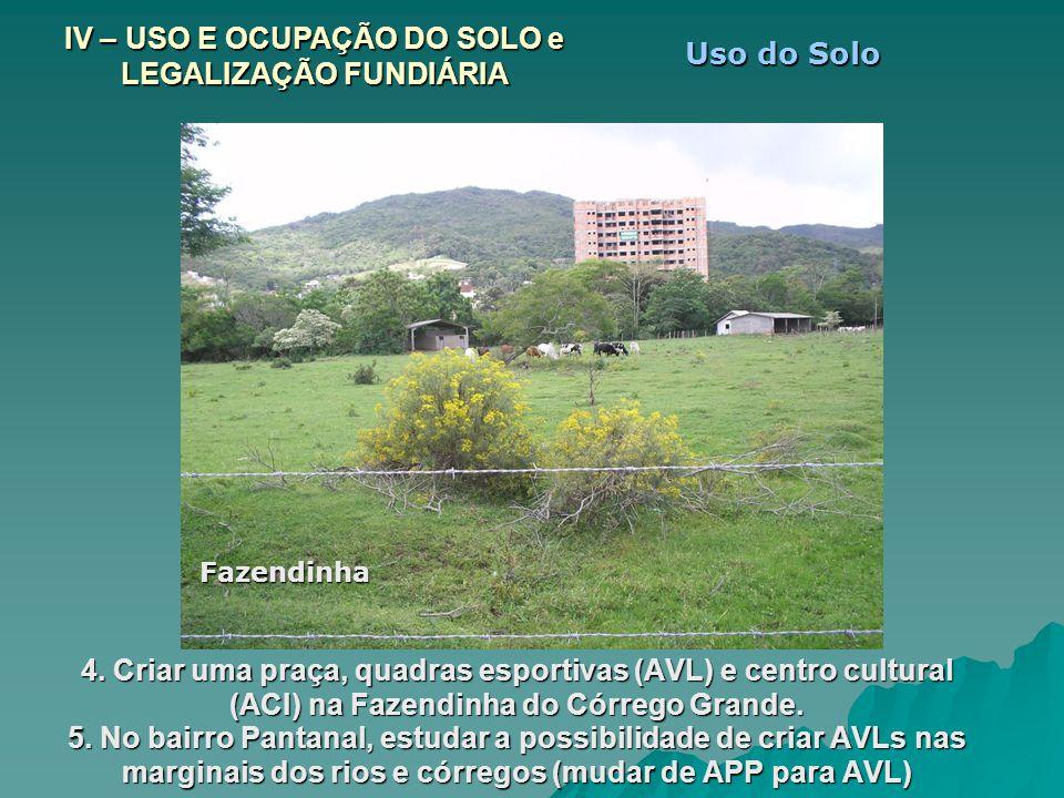 4. Criar uma praça, quadras esportivas (AVL) e centro cultural (ACI) na Fazendinha do Córrego Grande. 5. No bairro Pantanal, estudar a possibilidade d