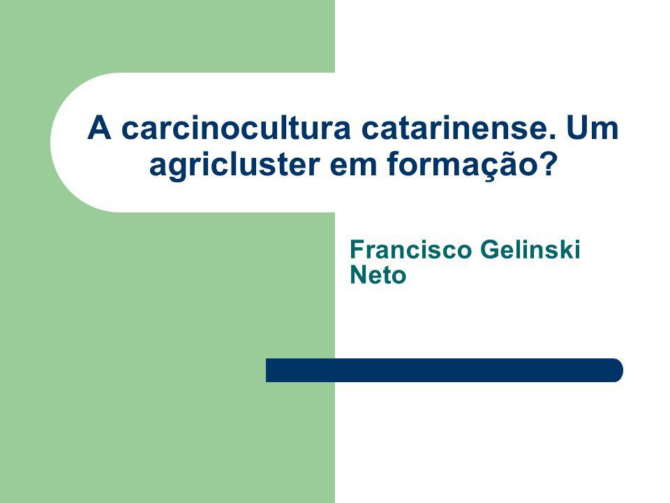 A carcinocultura catarinense. Um agricluster em formação? Francisco Gelinski Neto