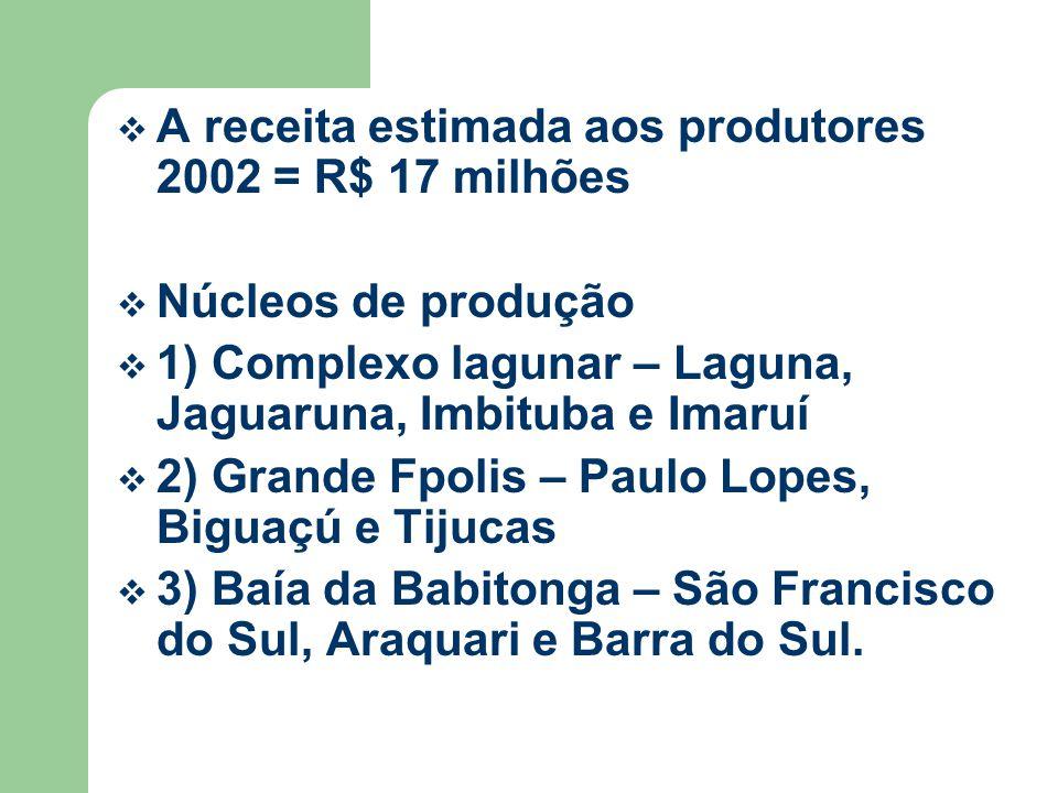 A receita estimada aos produtores 2002 = R$ 17 milhões Núcleos de produção 1) Complexo lagunar – Laguna, Jaguaruna, Imbituba e Imaruí 2) Grande Fpolis – Paulo Lopes, Biguaçú e Tijucas 3) Baía da Babitonga – São Francisco do Sul, Araquari e Barra do Sul.