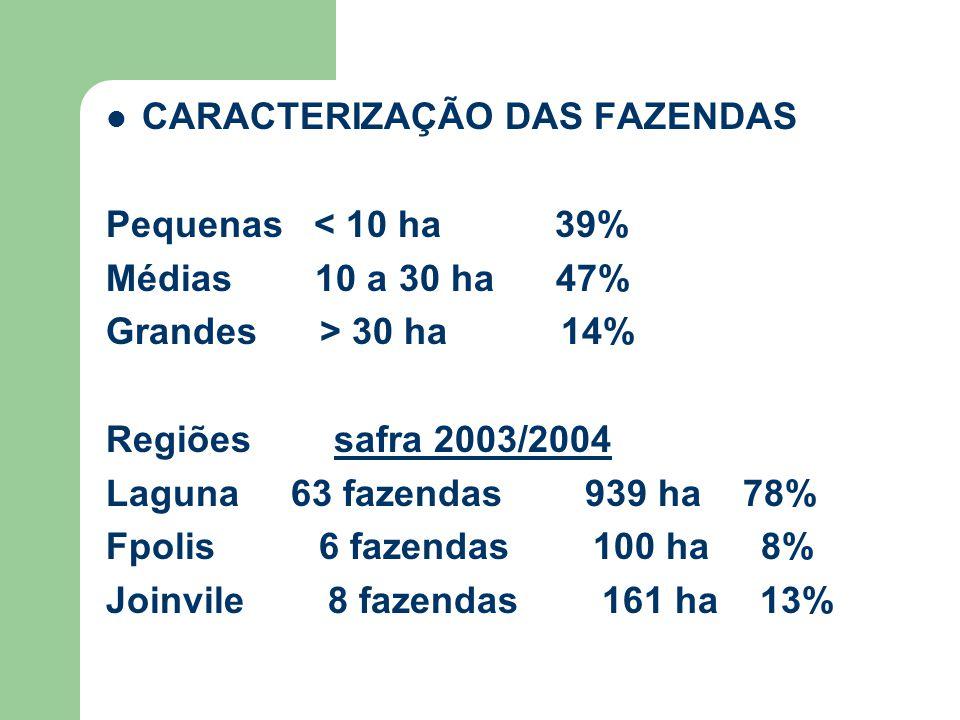 CARACTERIZAÇÃO DAS FAZENDAS Pequenas < 10 ha 39% Médias 10 a 30 ha 47% Grandes > 30 ha 14% Regiões safra 2003/2004 Laguna 63 fazendas 939 ha 78% Fpolis 6 fazendas 100 ha 8% Joinvile 8 fazendas 161 ha 13%
