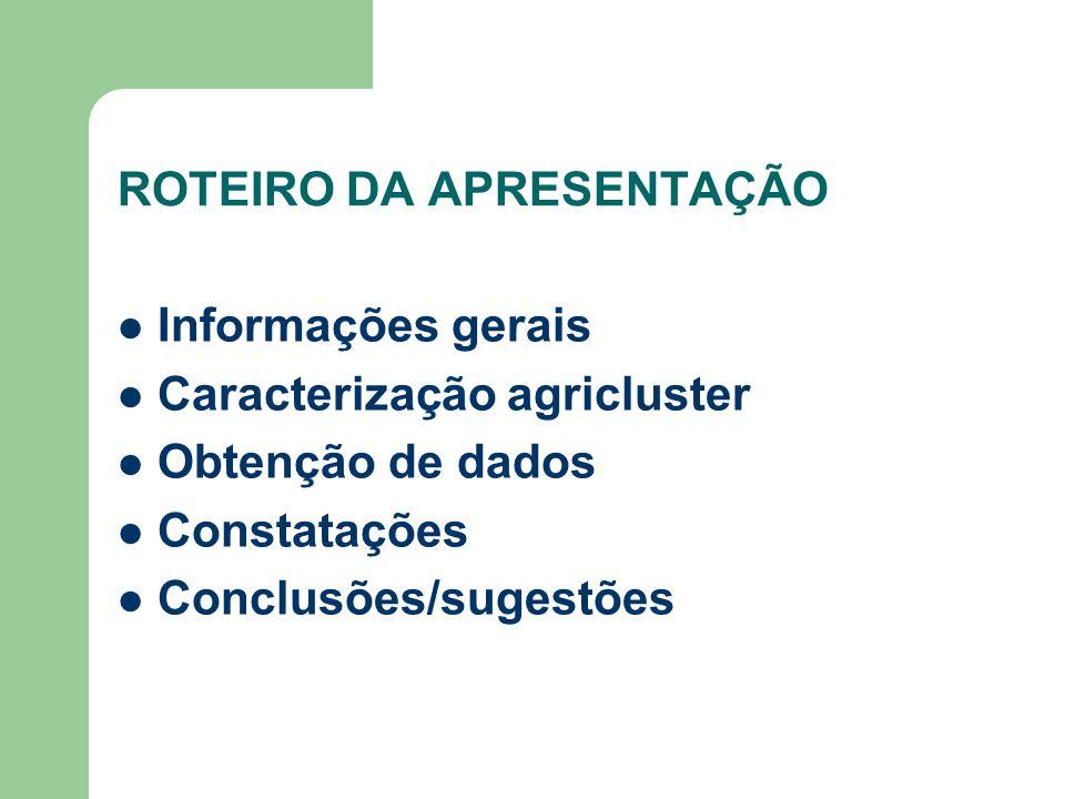 ROTEIRO DA APRESENTAÇÃO Informações gerais Caracterização agricluster Obtenção de dados Constatações Conclusões/sugestões
