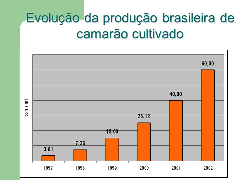 Evolução da produção brasileira de camarão cultivado
