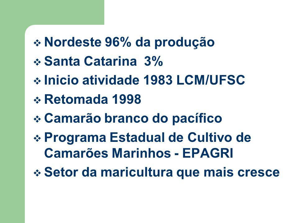 Nordeste 96% da produção Santa Catarina 3% Inicio atividade 1983 LCM/UFSC Retomada 1998 Camarão branco do pacífico Programa Estadual de Cultivo de Camarões Marinhos - EPAGRI Setor da maricultura que mais cresce