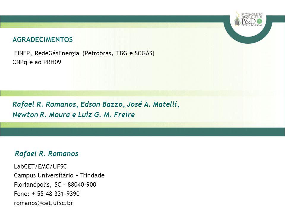 Rafael R.Romanos, Edson Bazzo, José A. Matelli, Newton R.