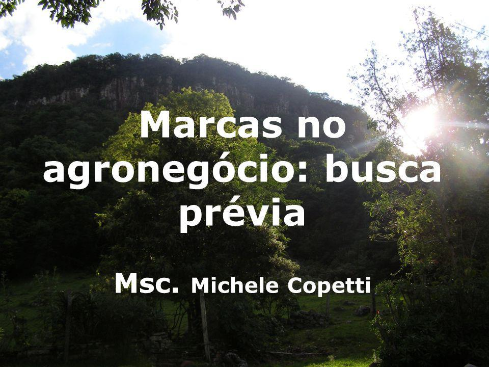 1 Marcas no agronegócio: busca prévia Msc. Michele Copetti