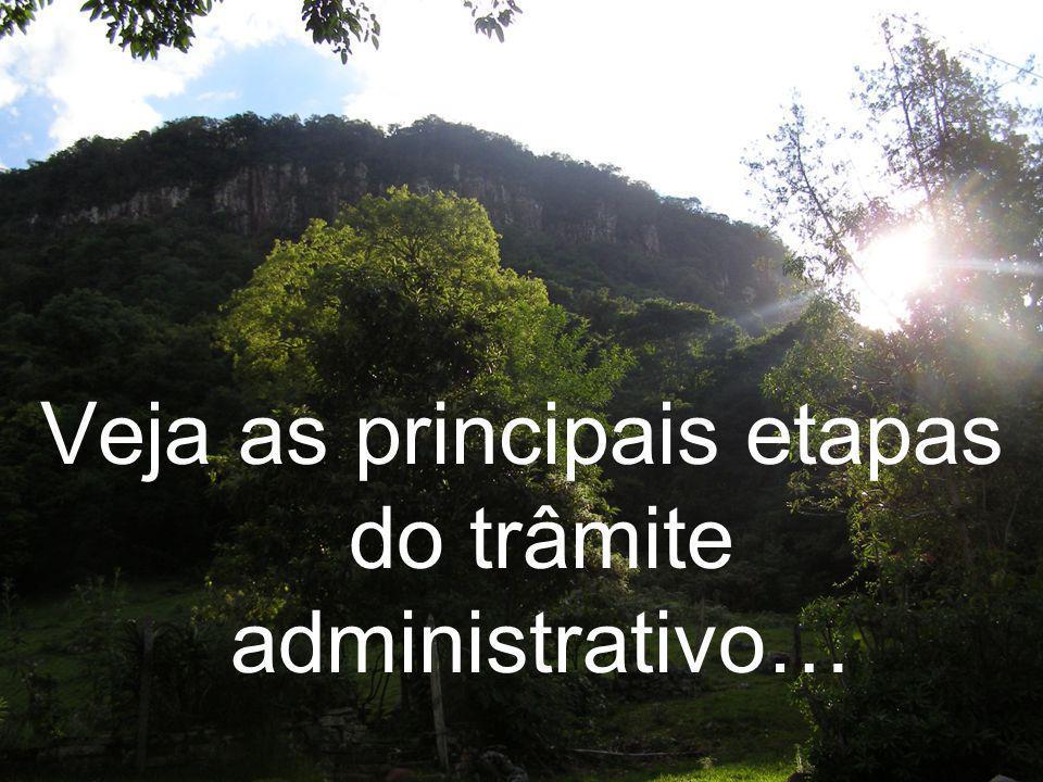 Veja as principais etapas do trâmite administrativo…