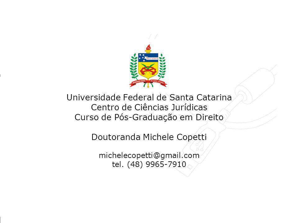 Universidade Federal de Santa Catarina Centro de Ciências Jurídicas Curso de Pós-Graduação em Direito Doutoranda Michele Copetti michelecopetti@gmail.