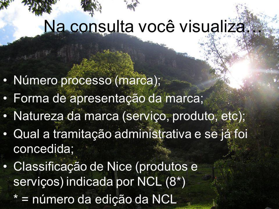 Na consulta você visualiza… Número processo (marca); Forma de apresentação da marca; Natureza da marca (serviço, produto, etc); Qual a tramitação admi