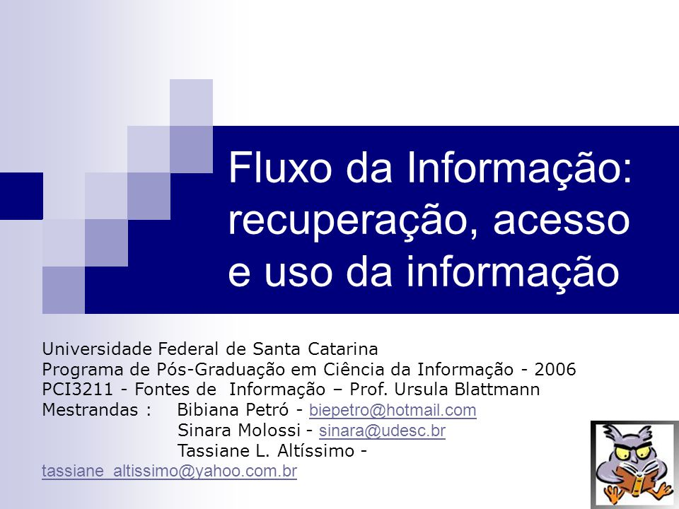 Fluxo da Informação: recuperação, acesso e uso da informação Universidade Federal de Santa Catarina Programa de Pós-Graduação em Ciência da Informação