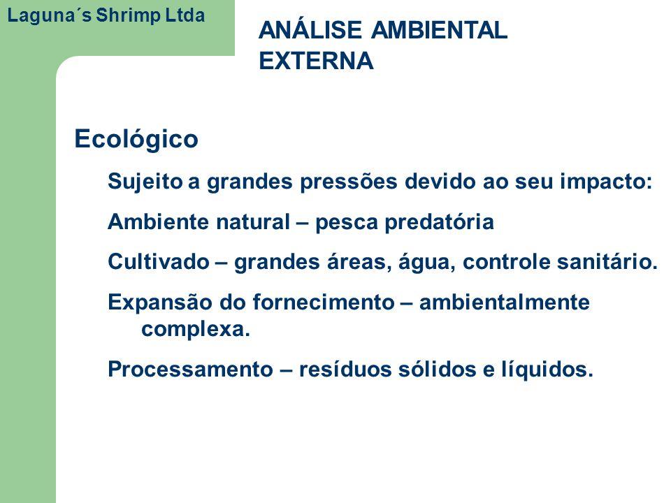 Laguna´s Shrimp Ltda ANÁLISE AMBIENTAL EXTERNA Ecológico Sujeito a grandes pressões devido ao seu impacto: Ambiente natural – pesca predatória Cultiva