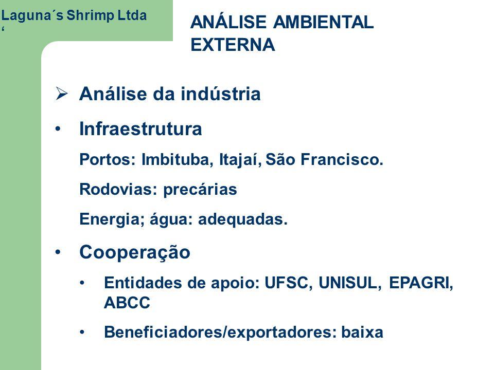 Laguna´s Shrimp Ltda ANÁLISE AMBIENTAL EXTERNA Análise da indústria Infraestrutura Portos: Imbituba, Itajaí, São Francisco. Rodovias: precárias Energi