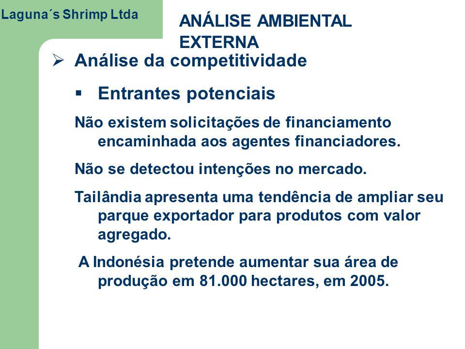 Laguna´s Shrimp Ltda ANÁLISE AMBIENTAL EXTERNA Análise da competitividade Entrantes potenciais Não existem solicitações de financiamento encaminhada a