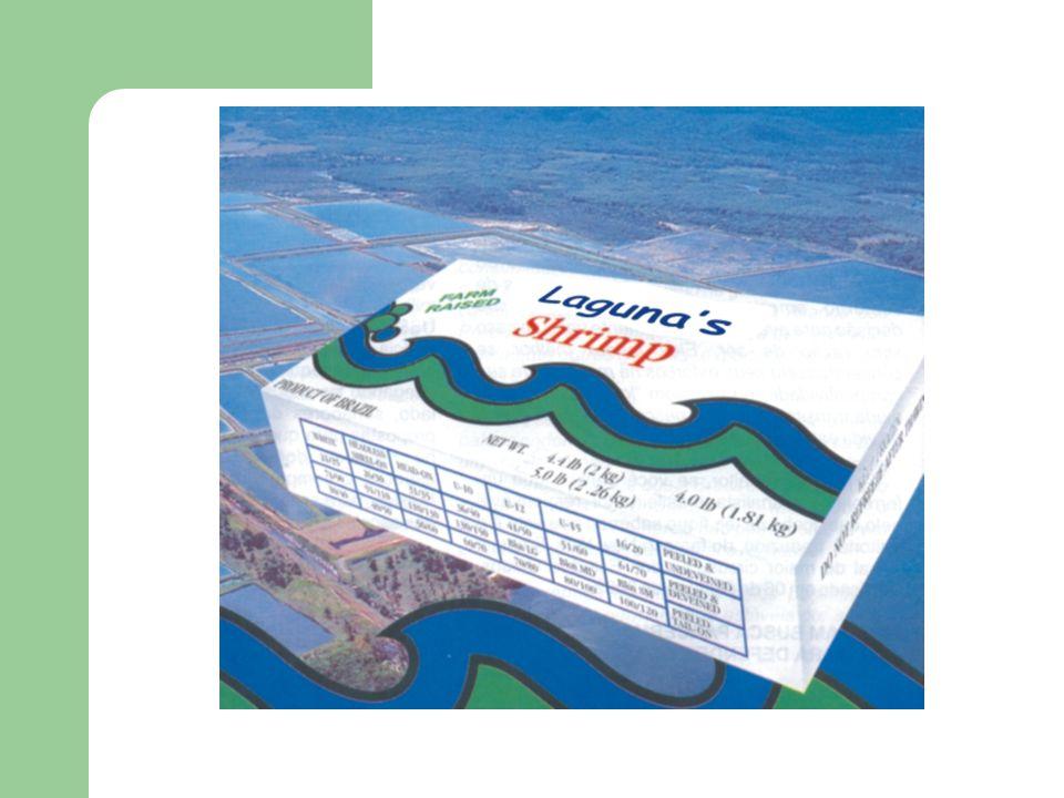 Laguna´s Shrimp Ltda INTRODUÇÃO Objetivo Geral Estudar a viabilidade da indústrialização do camarão a partir de uma produção local, bem como sua comercialização.