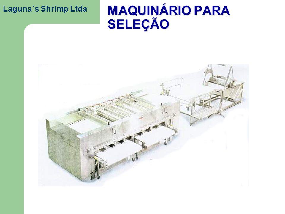MAQUINÁRIO PARA SELEÇÃO Laguna´s Shrimp Ltda