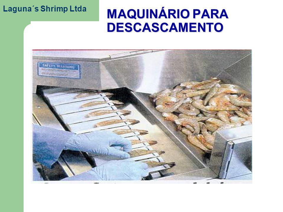 MAQUINÁRIO PARA DESCASCAMENTO Laguna´s Shrimp Ltda