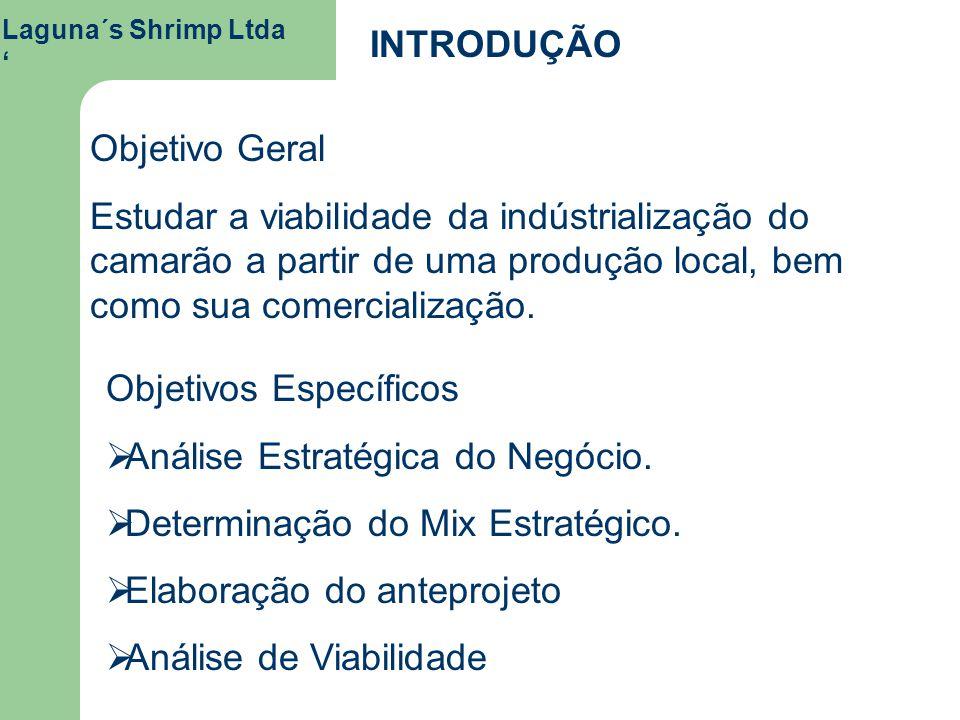 Laguna´s Shrimp Ltda INTRODUÇÃO Objetivo Geral Estudar a viabilidade da indústrialização do camarão a partir de uma produção local, bem como sua comer