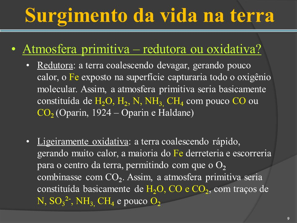 Fungos Interational Code of Botanical Nomenclature 10 a edição do The Dictionary of the Fungi 70 Classificação e nomenclatura