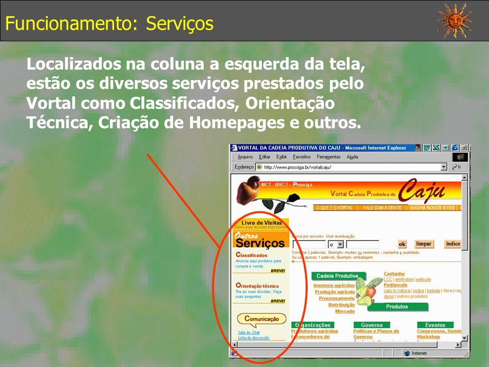 Funcionamento: Serviços Localizados na coluna a esquerda da tela, estão os diversos serviços prestados pelo Vortal como Classificados, Orientação Técnica, Criação de Homepages e outros.