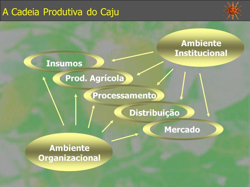 A Cadeia Produtiva do Caju Insumos Prod.