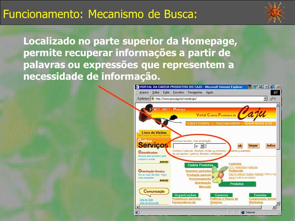 Funcionamento: Mecanismo de Busca: Localizado no parte superior da Homepage, permite recuperar informações a partir de palavras ou expressões que representem a necessidade de informação.
