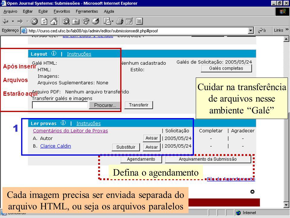 Cuidar na transferência de arquivos nesse ambiente Galé Após inserir Arquivos Estarão aqui Cada imagem precisa ser enviada separada do arquivo HTML, o