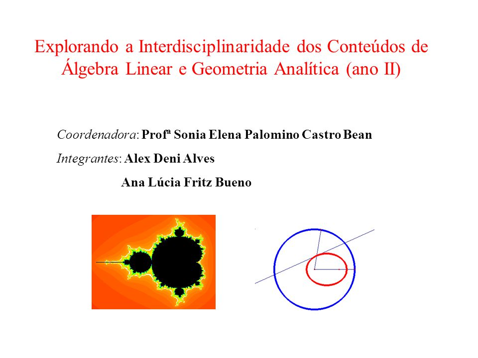Explorando a Interdisciplinaridade dos Conteúdos de Álgebra Linear e Geometria Analítica (ano II) Coordenadora: Profª Sonia Elena Palomino Castro Bean
