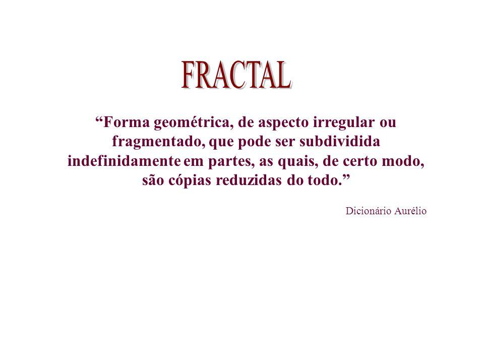 Forma geométrica, de aspecto irregular ou fragmentado, que pode ser subdividida indefinidamente em partes, as quais, de certo modo, são cópias reduzid