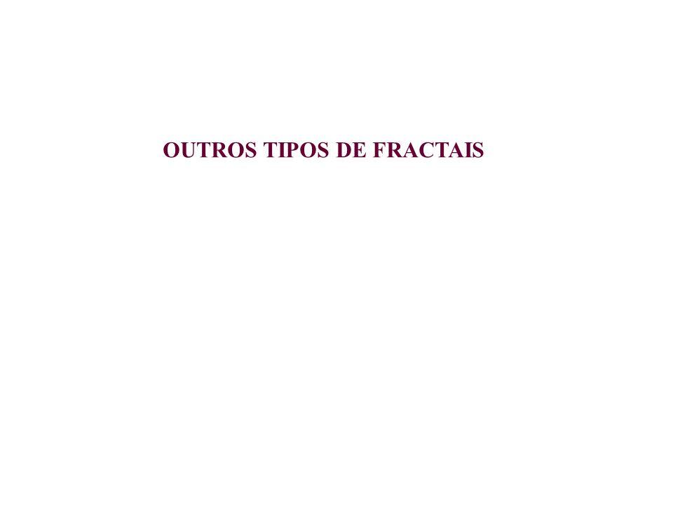 OUTROS TIPOS DE FRACTAIS