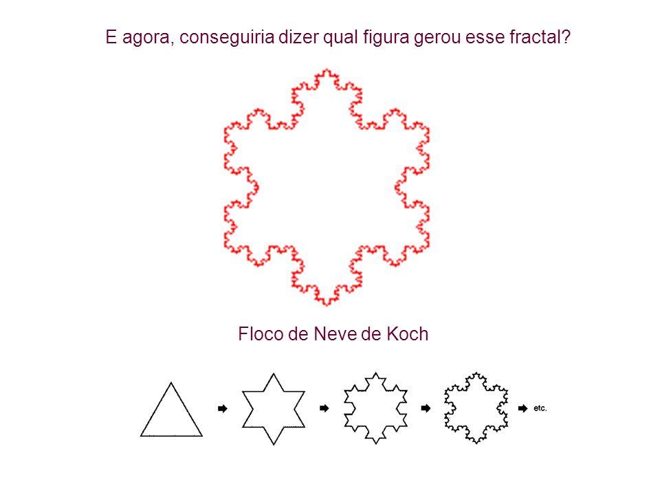 Floco de Neve de Koch E agora, conseguiria dizer qual figura gerou esse fractal?