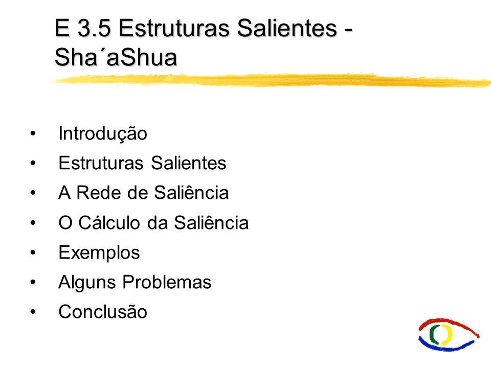 E 3.5 Estruturas Salientes - Sha´aShua Introdução Estruturas Salientes A Rede de Saliência O Cálculo da Saliência Exemplos Alguns Problemas Conclusão